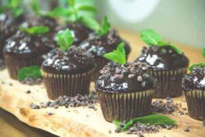Mint Chocolate Plant Cupcakes