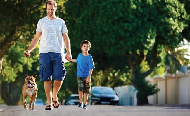 Natures-Emporium-Get-Active-Healthy-Tips-Image
