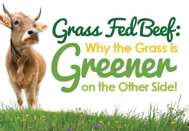 Grass-Fed-Beef-Benefits-Blog-Header-Image-Nature's-Emporium
