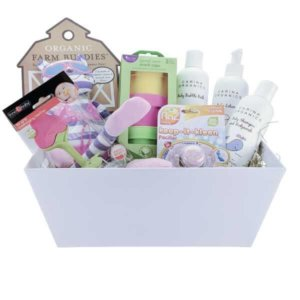 Earths bounty vegan gluten free essentials gift basket pure clean eco friendly baby essentials gift basket negle Images
