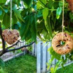 Two separate photos of two different bird feeders (left, heart-shaped, right doughnut-shaped)in each photo hanging from a tree with twine. In the left photo.